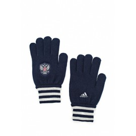 Перчатки Россия Синие