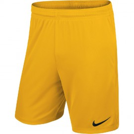 Шорты NIKE PARK II KNIT SHORT NB 725887-739 желтые
